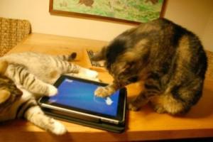 friskies-tablet-micio_t